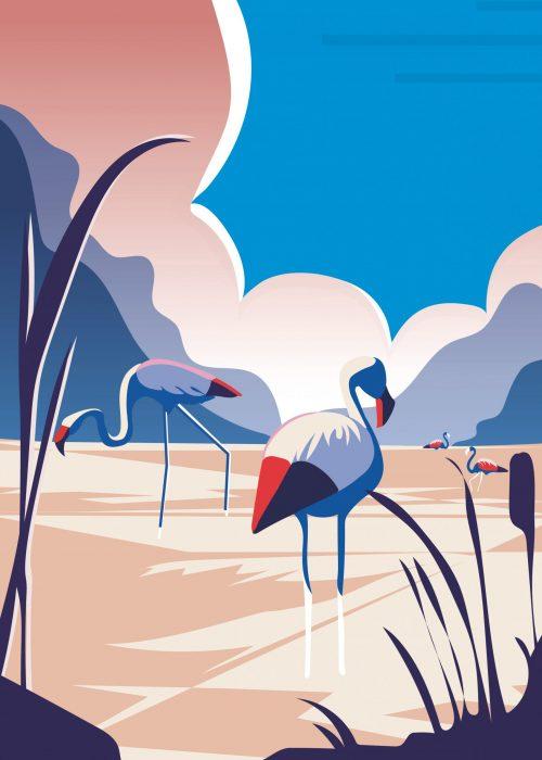 Poster-Flamingo